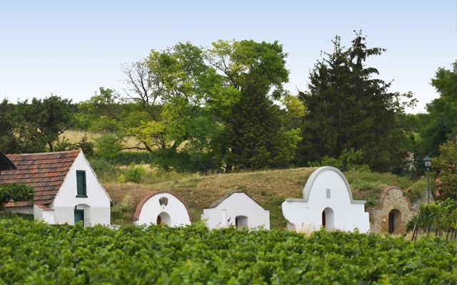 Prellenkirchen wine cellars